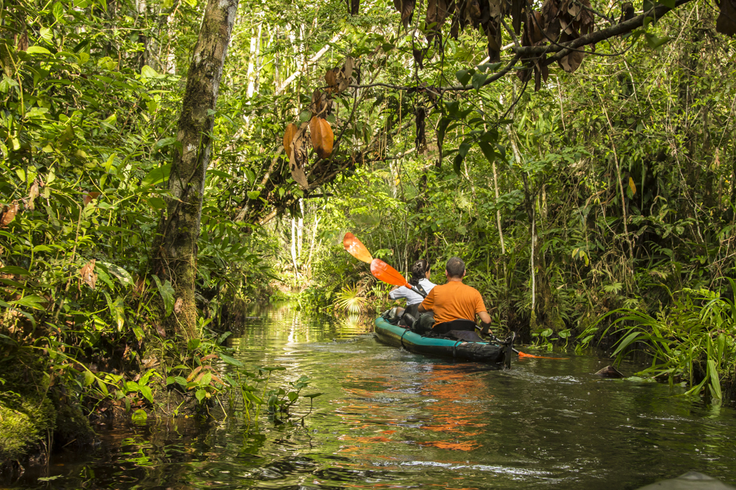 Kayakers exploring Amazon river tributary stream